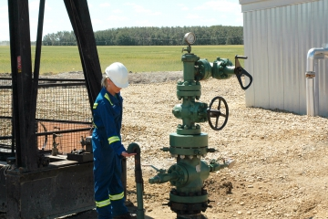 Natural gas well head